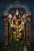 Annual Archana to All Deities -  52 Weeks